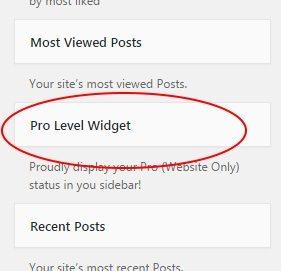 pro-level